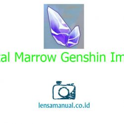 Lokasi Farming Crystal Marrow Genshin Impact