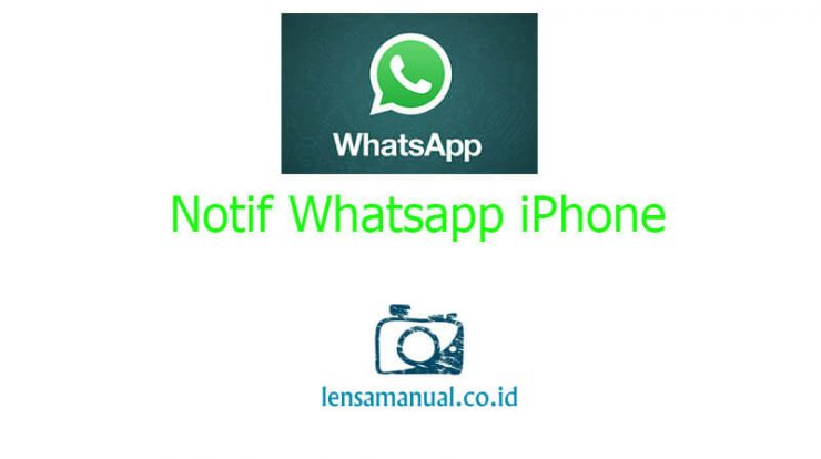 Notif Whatsapp iPhone