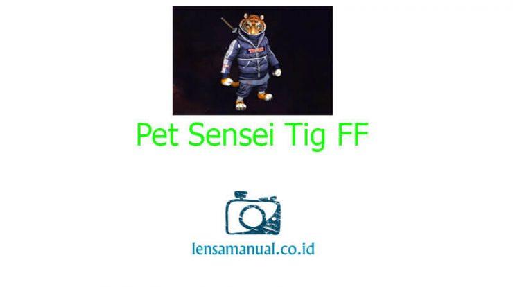 Pet Sensei Tig FF