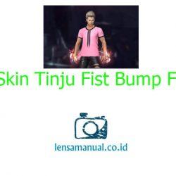Skin Tinju Fist Bump FF